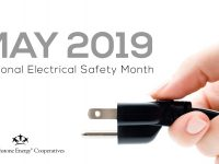 Mayelectricalsafety 2019